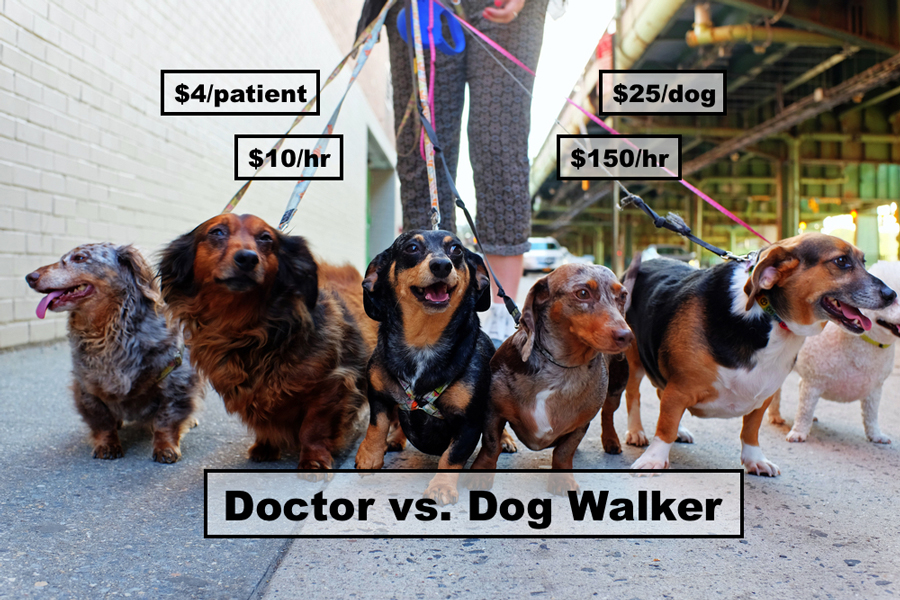 Doctor-Earns-More-As-Dog-Walker